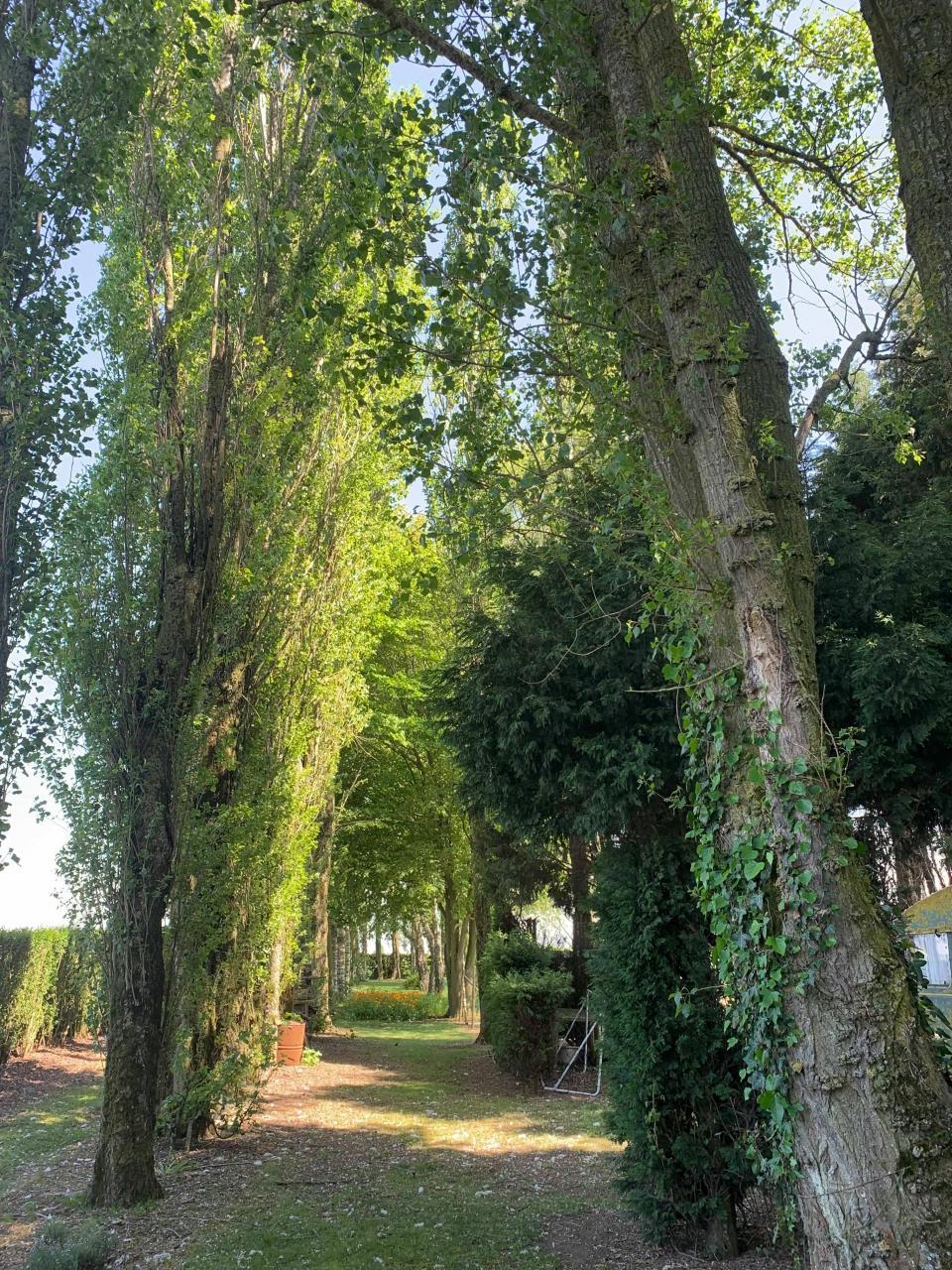 Le Chemin du Deuil